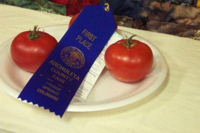 blue ribbon tomatoes!